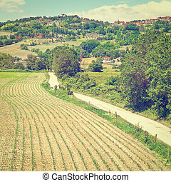 Fields - The Medieval Italian Town Surrounded by Forests and...