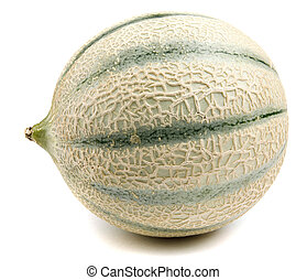 The melon of the cantaloupe is isolated on a white background. a side view.