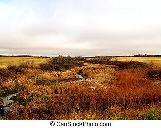 The Minnewasta Creek