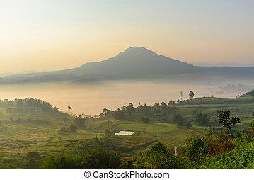 the mist on high mountain