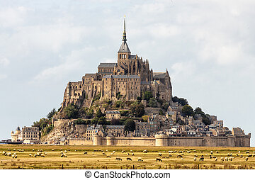 The Mont Saint Michel and sheeps