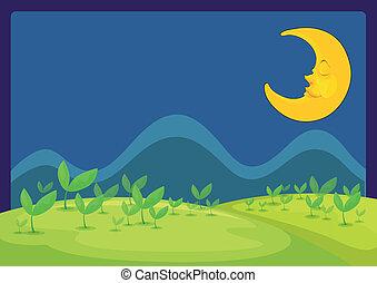 The moon in a beautiful night