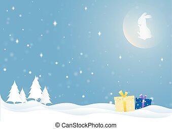 The moon rabbit in winter season.