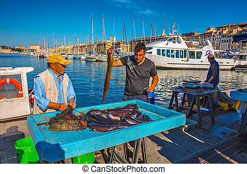 The morning fish market in Marseilles - MARSEILLE, FRANCE - ...