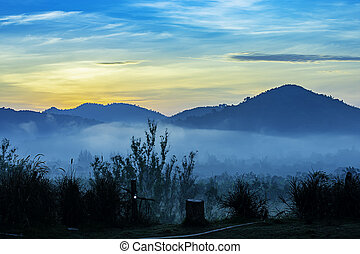 The morning sun behind the mountain and fog covering the trees.