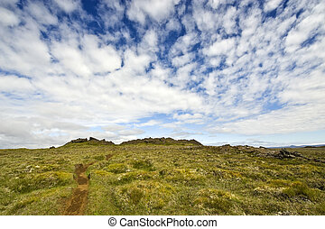 Kjolur Landscape - The moss covered lava fields of an...