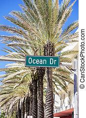 famous street in Miami Beach