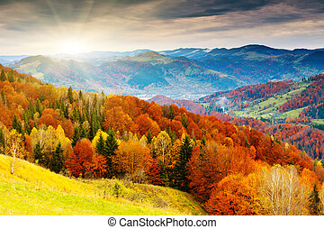 autumn - the mountain autumn landscape with colorful forest