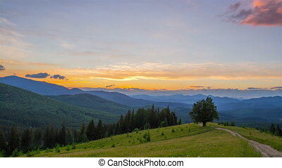 The Mountain Forest on the Background of the Sunset