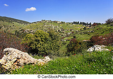 The mountain Meron in clear spring day - Vicinities of...
