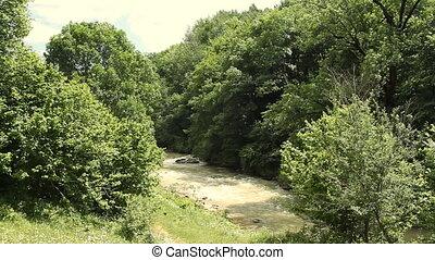 The mountain river among the rocks