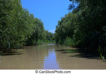 The mouth of the Danube overgrown with green cane with both sides of the River under blue skies