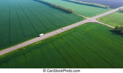 The movement of a white car on the highway among the green fields. Wheat field.