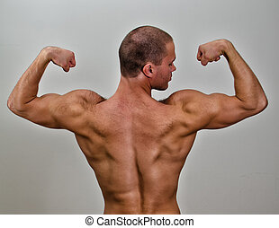 The muscular bodybuilder back. On grey background.