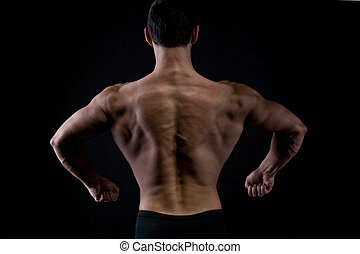 The muscular male back