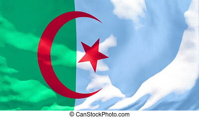The national flag of Algeria is flying in the wind.