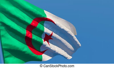 The national flag of Algeria is flying in the wind