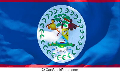 The national flag of Belize is flying in the wind.