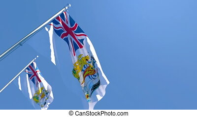 The national flag of British Antarctic Territory flutters in the wind against a blue sky