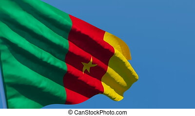 The national flag of Cameroon is flying in the wind