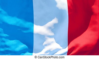 The national flag of France is flying in the wind.