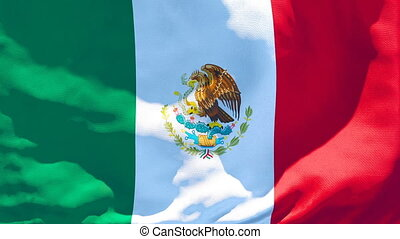 The national flag of Mexico flutters in the wind