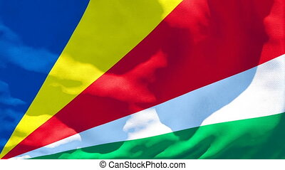 The national flag of Seychelles flutters in the wind