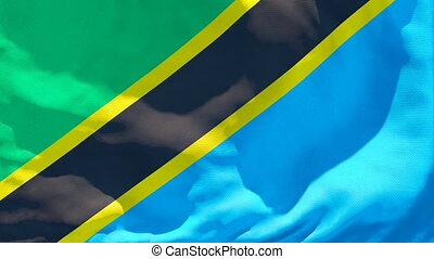 The national flag of Tanzania flutters in the wind.
