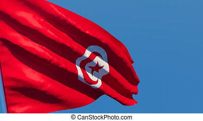 The national flag of Tunisia flutters in the wind against a ...