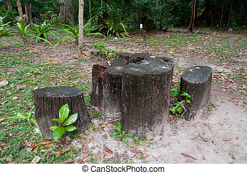 the natural chair made from log on park