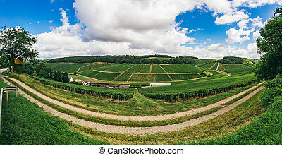The nature of northern Burgundy