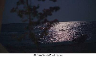 The night sea illuminates the moon