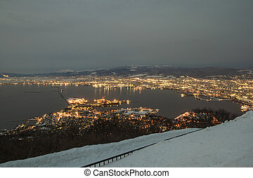 The night view of hakodate from the mount hakodate in winter season.