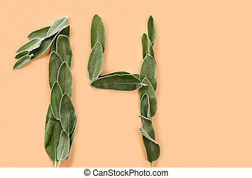 The number 14 made from green petals of sage