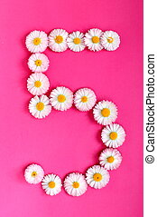 The number 5 is written in white pink flowers on a bright pink background.