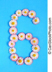 The number 6 is written in white pink flowers on a blue background.