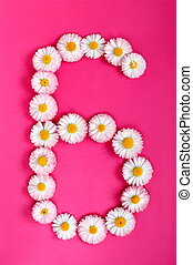 The number 6 is written in white pink flowers on a bright pink background