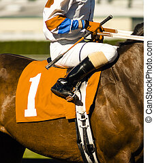The Number One Horse Prepares to Enter the Start Gate at Horse T
