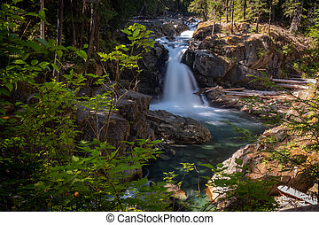 The Ohanapecosh River cascades Silver Falls at Mount Rainier National Park, a wide view framed by foliage