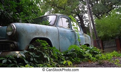 The old abandoned car was overgrown with vegetation.