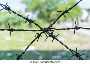 The old barbed wire.
