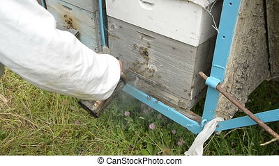 The old beekeeper processes the entrance to the hive with smoke from a special smoke kettle.