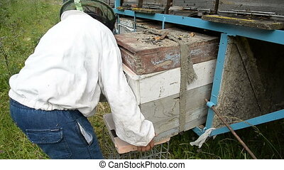 The old beekeeper takes out the hive from the trailer.