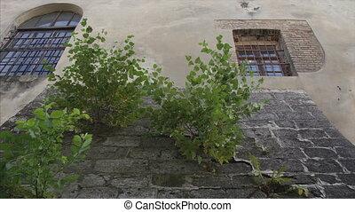 The old brick wall background animation blackmagic ursa mini...