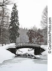 The old bridge in park