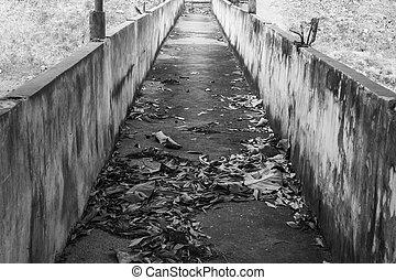 The old bridge walk