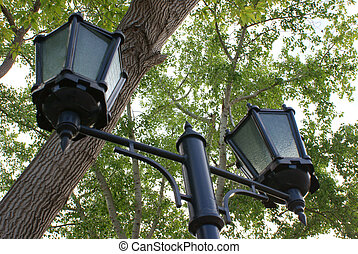 The old lamp in the park.
