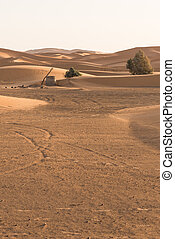 The old well in Sahara desert for groundwater