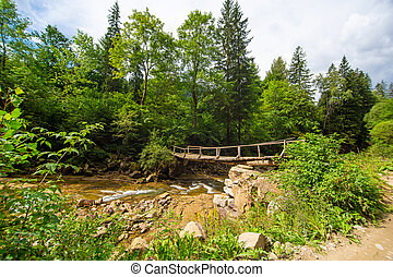 The old wooden weak bridge over small river in mountain forest