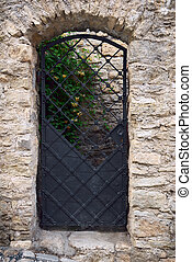 The old wrought-iron door in the wall, built of stone.